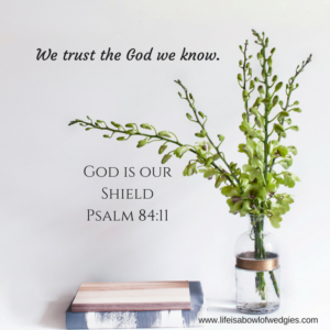 we-trust-the-god-we-know-2